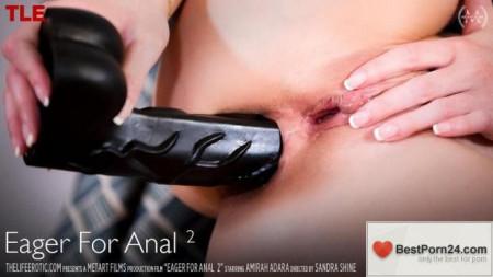 The Life Erotic - Amirah Adara