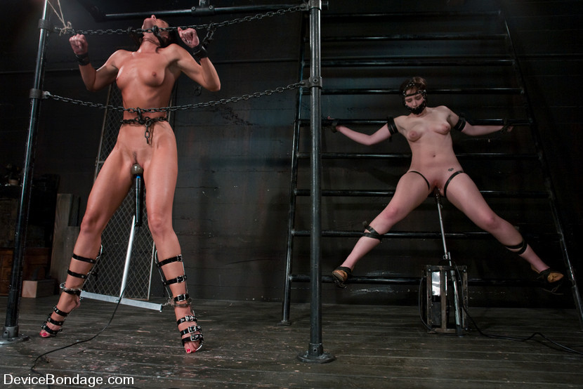 BestBDSM24.com - Image 6333 - Two in a cage is worth morethan one with a shaved bush. -Countdown to Relaunch - 6 of 20