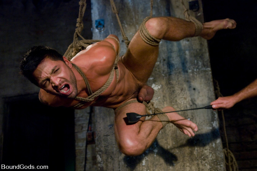 BestBDSM24.com - Image 7370 - Good Boy