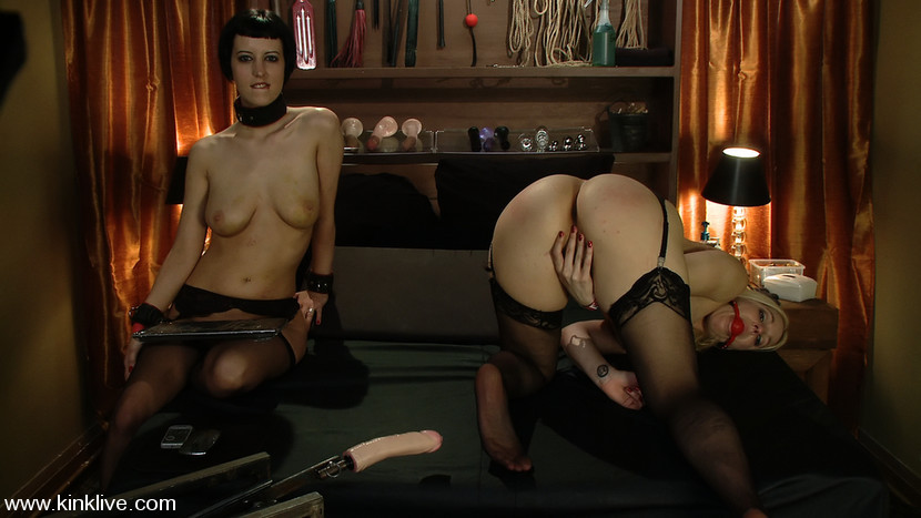 BestBDSM24.com - Image 7638 - Hollie's at your service