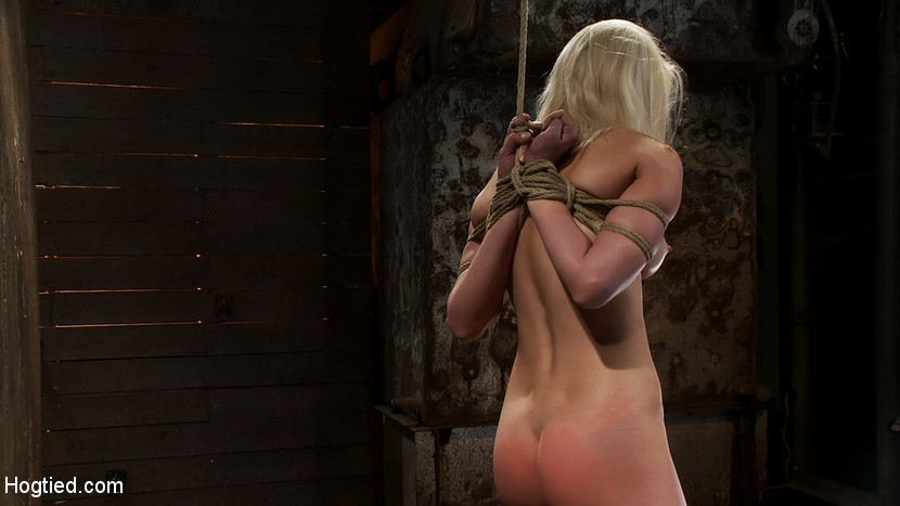 BestBDSM24.com - Image 12596 - Local amateur girl in her first hardcore bondage shootReverse Prayer, flogged her perfect ass.