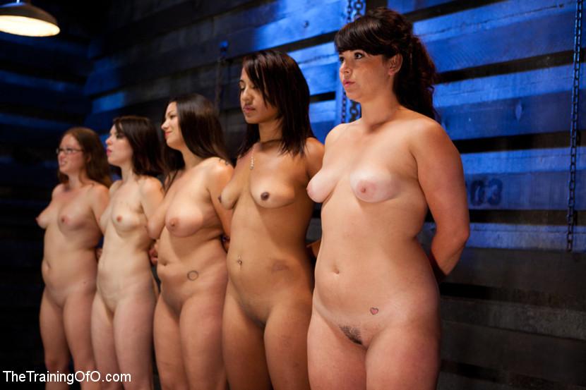 BestBDSM24.com - Image 15106 - Five Girl IntakeThe Elimination Begins
