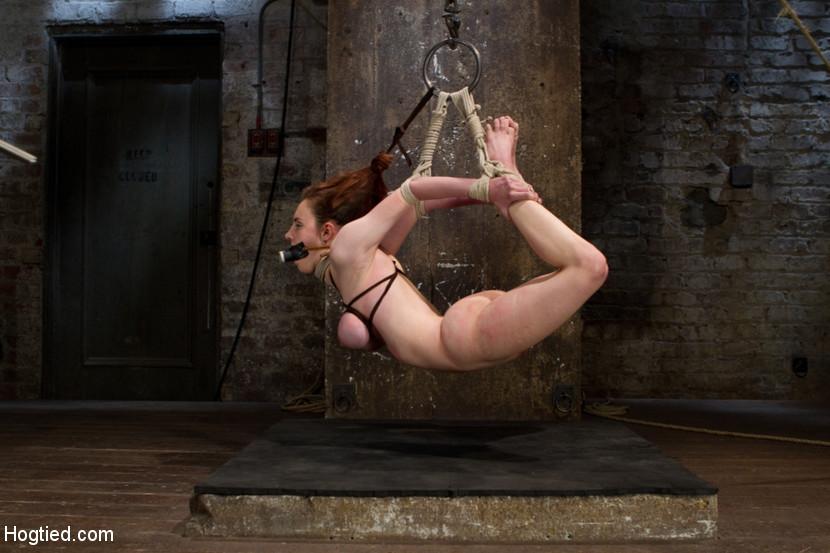 BestBDSM24.com - Image 23302 - Big Titted Slut Iona Grace Suspended and Tormented on HogTied.com