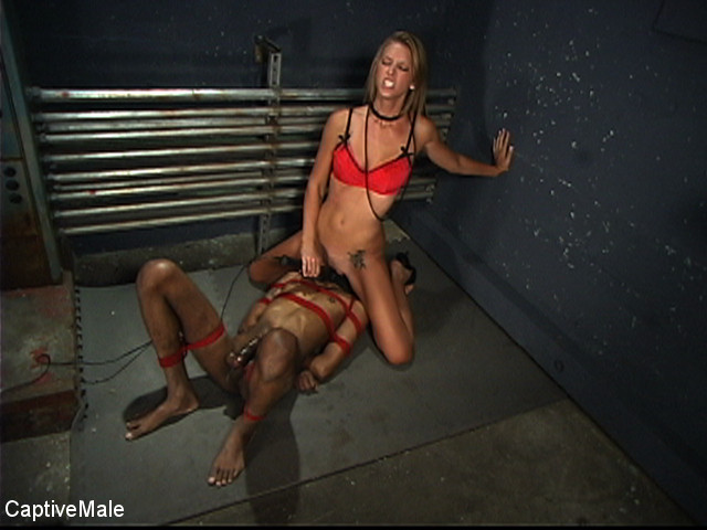 BestBDSM24.com - Image 34724 - The Wormboy