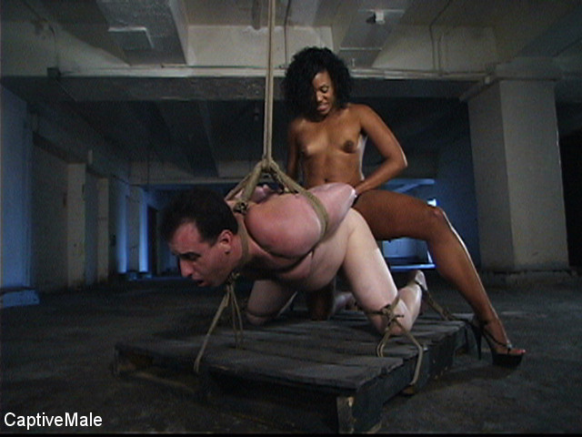 BestBDSM24.com - Image 34736 - Pathetic Mini