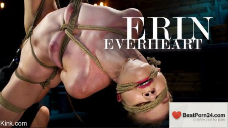 Hog Tied – Erin Everheart